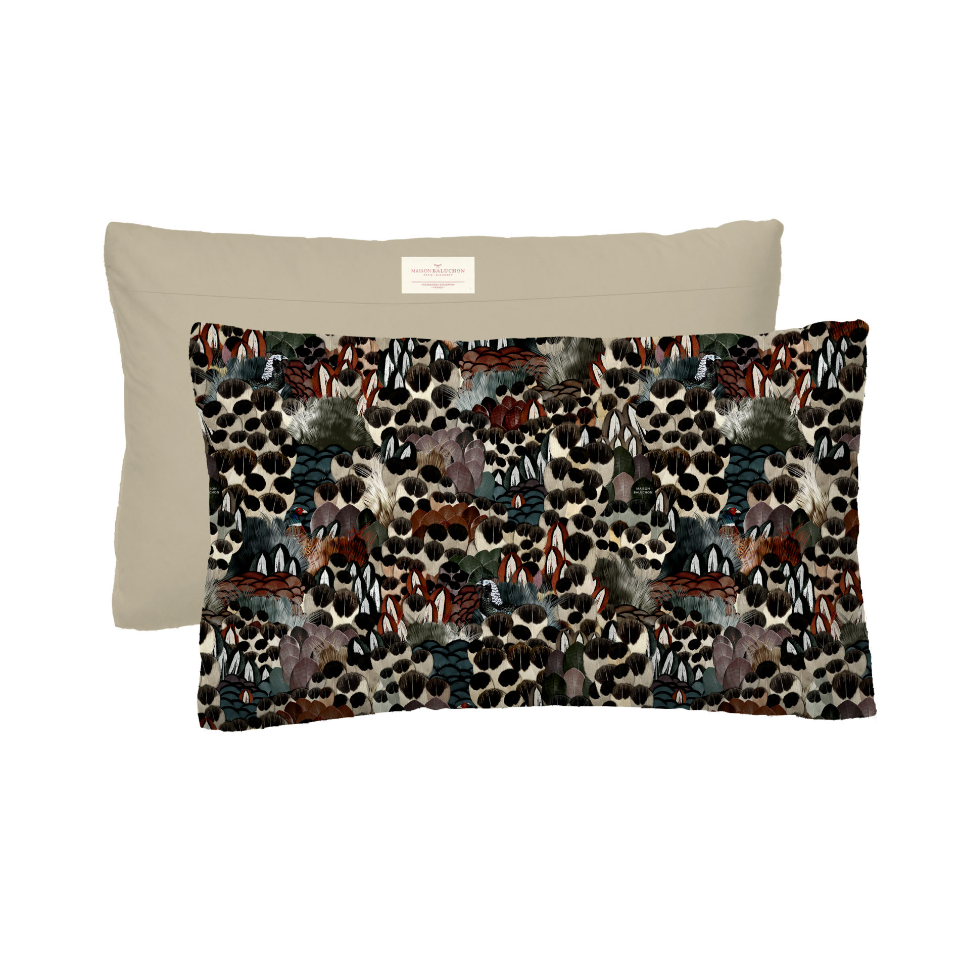 Coussin Format 50x30 cm Sauvage N°24
